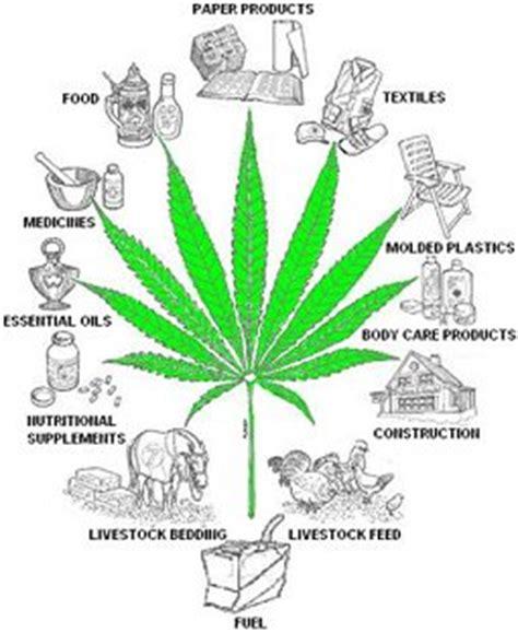 The Benefits Of Marijuana Legalization - UK Essays